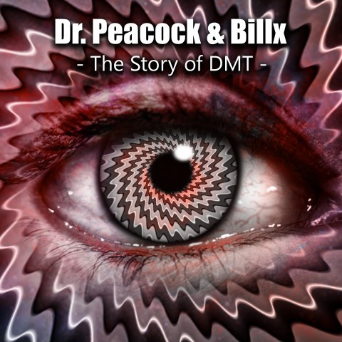 Frenchcore - Hardcore - The Story of DMT