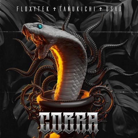 Frenchcore - Hardcore - Cobra
